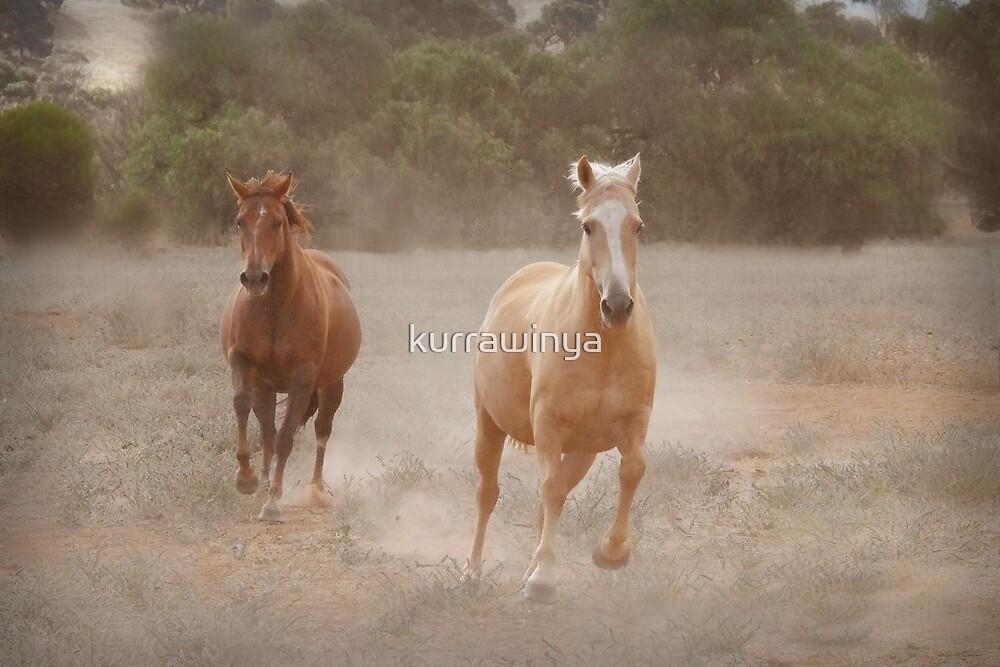 Dust thunder by Penny Kittel