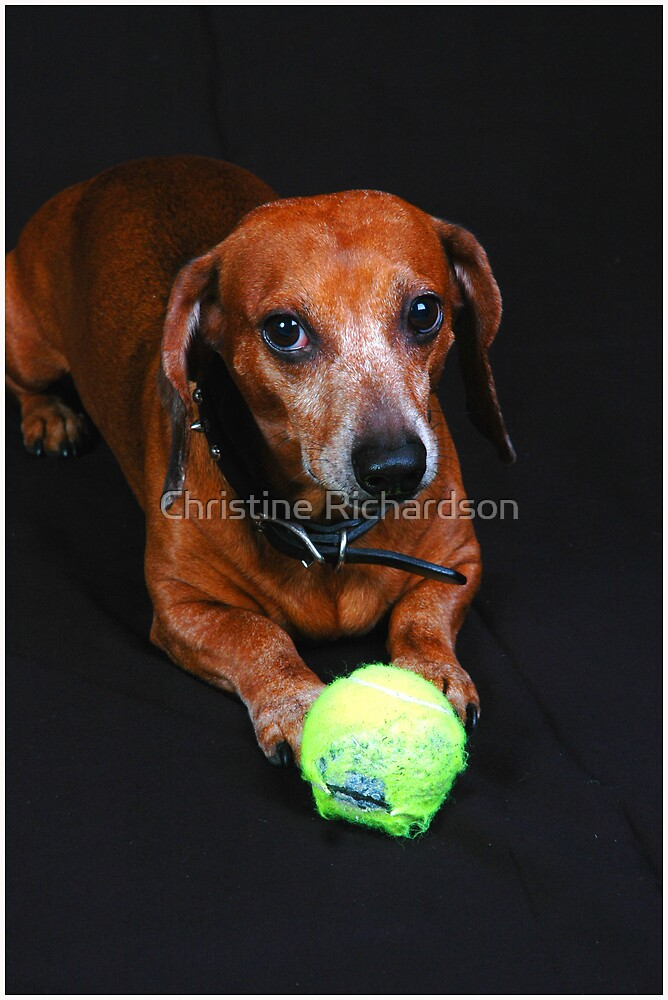 Please Play with me by Christine Richardson