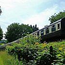 South Devon Steam Train by lezvee