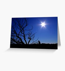 Outback Star Greeting Card