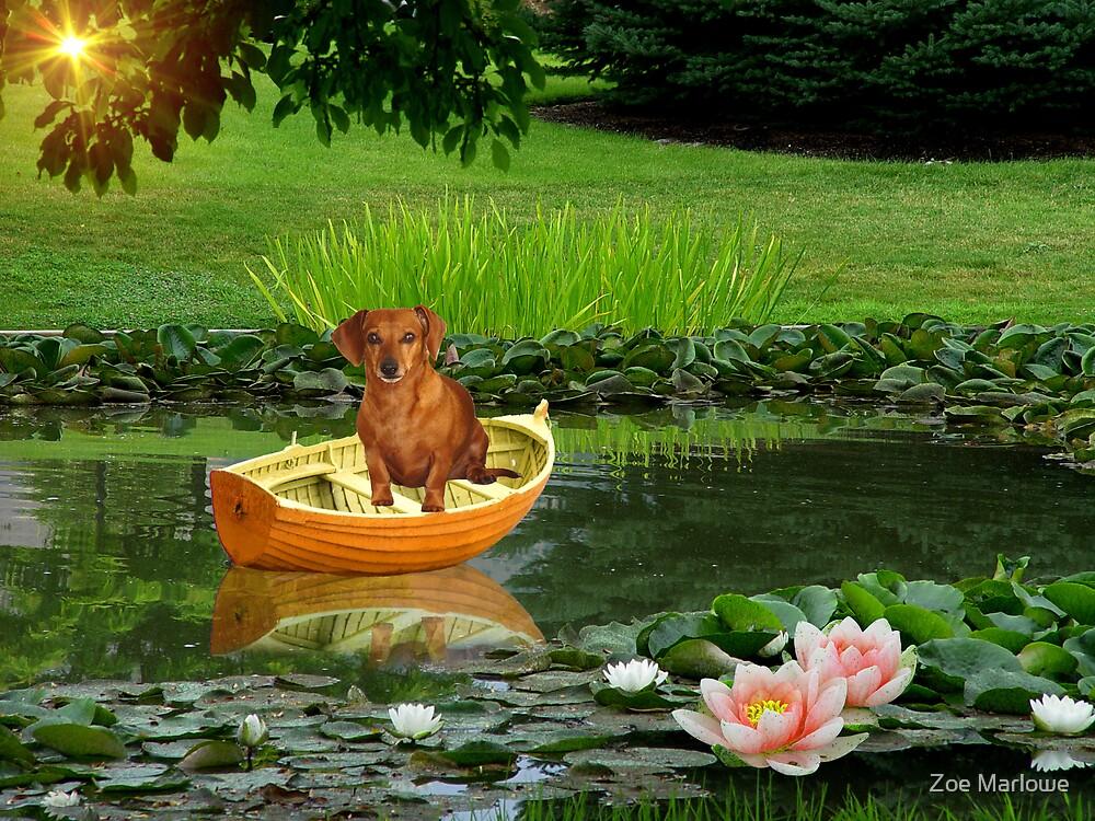 Rusty Takes A Little Boat Ride by Zoe Marlowe