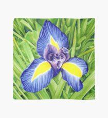Blue Iris Flower, Attingham Park - Pigment Marker Drawing  Scarf