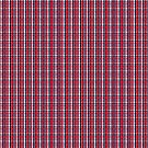 «Washington Sports Fan Rojo Blanco Azul Plaid» de Shelley Neff