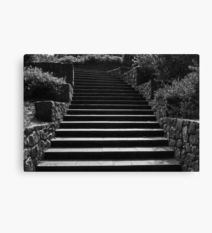 Kings Park Stairs  Canvas Print
