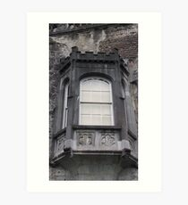 Kilkenny Castle, Kilkenny, Ireland Art Print