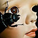 Porcelain Doll Head and Insects on Black Background by Shelly Still