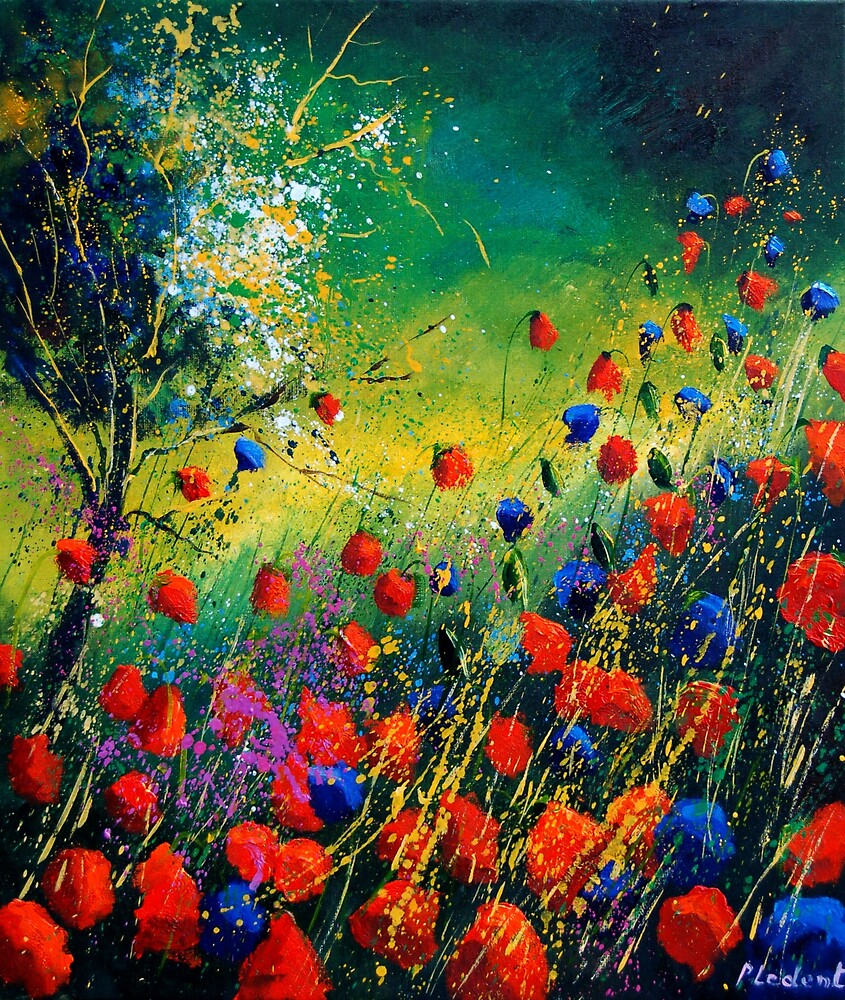 red and blue poppies 670808 by calimero