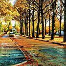 Sköldungagatan Uppsala In Autumn by Barry W  King