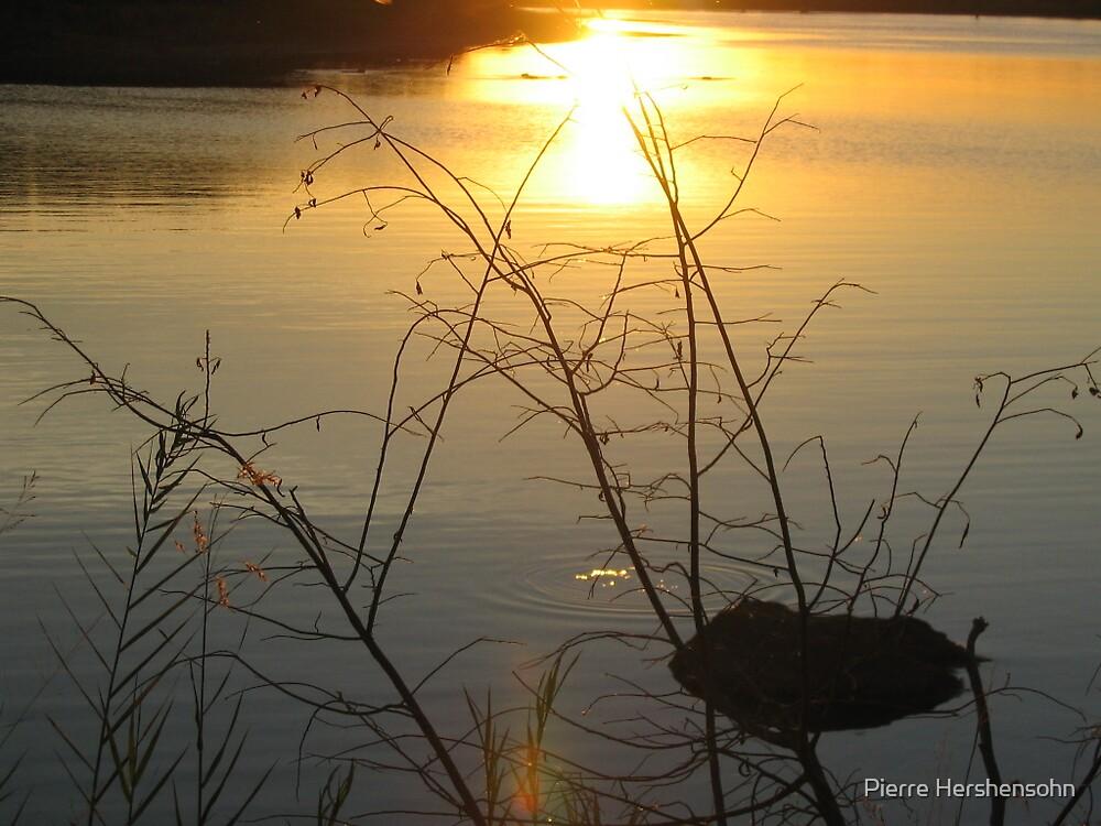 Pioneer dam sunset Kruger National Park by Pierre Hershensohn