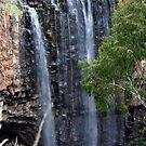 Where the water falls by Jodi Webb