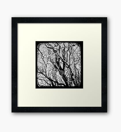 Tortured Framed Print