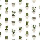 Cacti & Succulents (White) by Vicky Webb