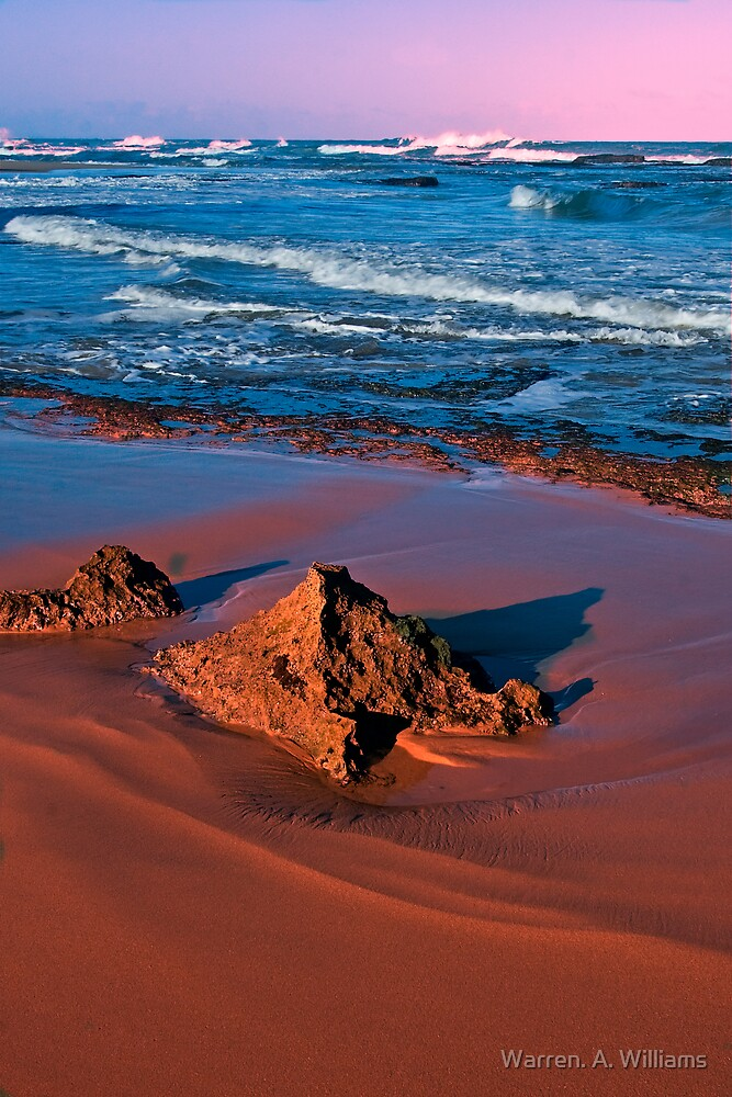Warm Sunlight on the Sand. by Warren. A. Williams