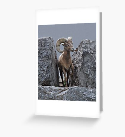 King of the Mountain Greeting Card