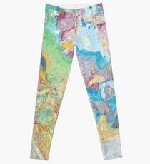 USGS Geologic Map of North America Leggings