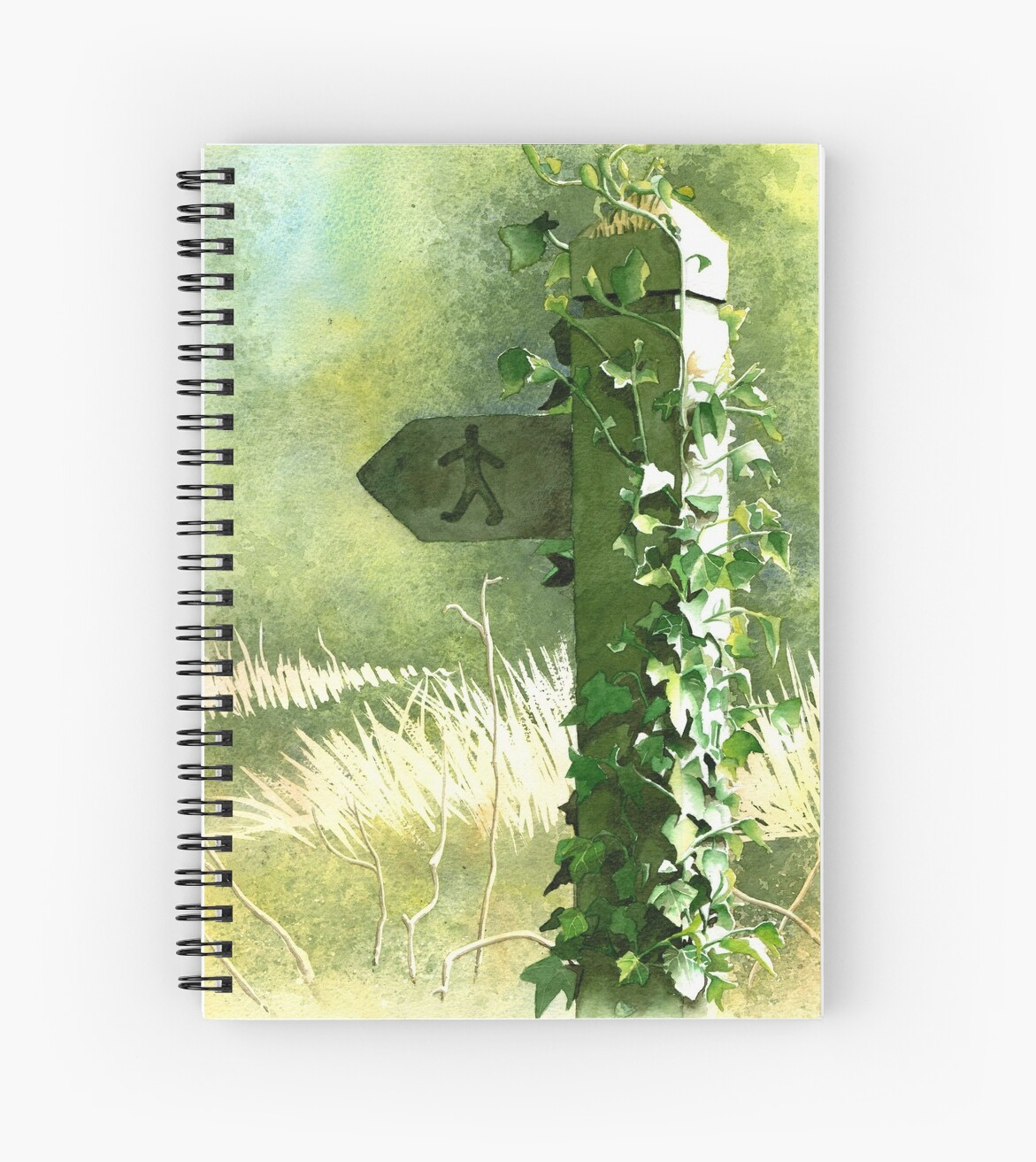 Footpath Sign with Ivy - Watercolour painting by Gee Massam