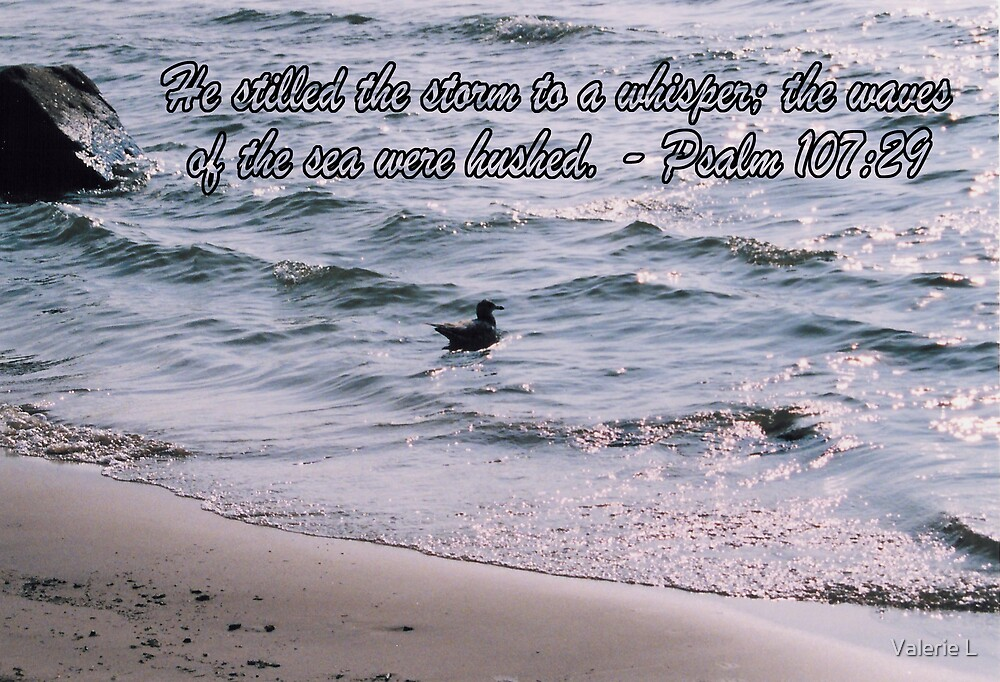 Psalm 107:29 by Valerie L