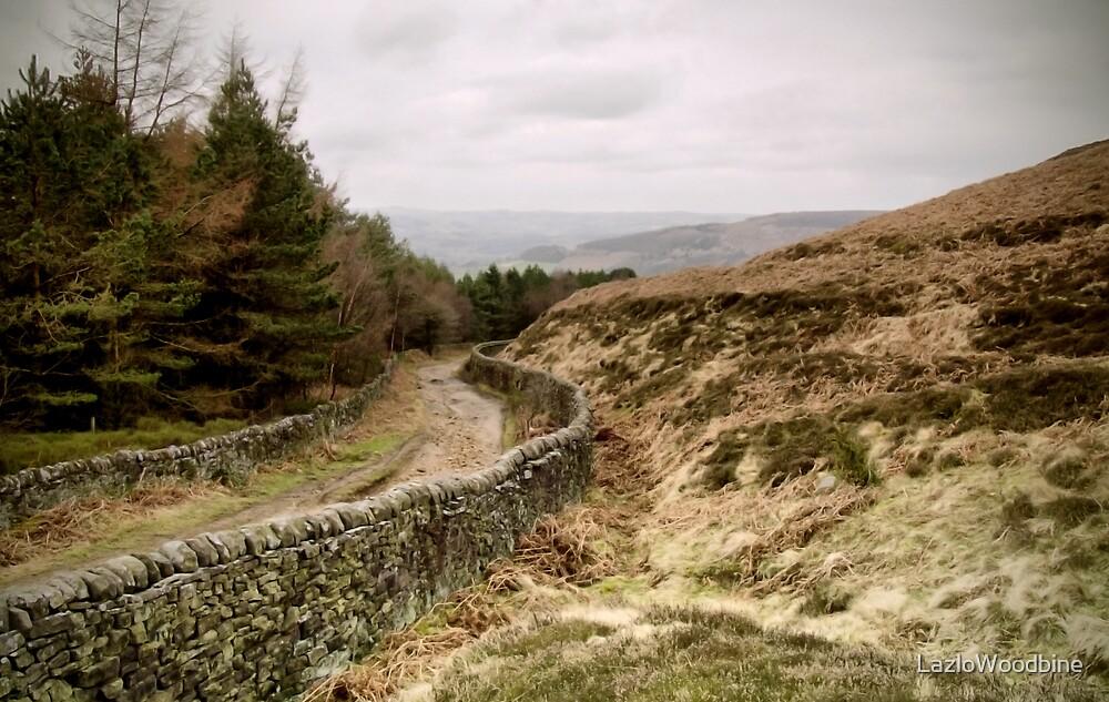 Beeley Moor - The Peak District by LazloWoodbine
