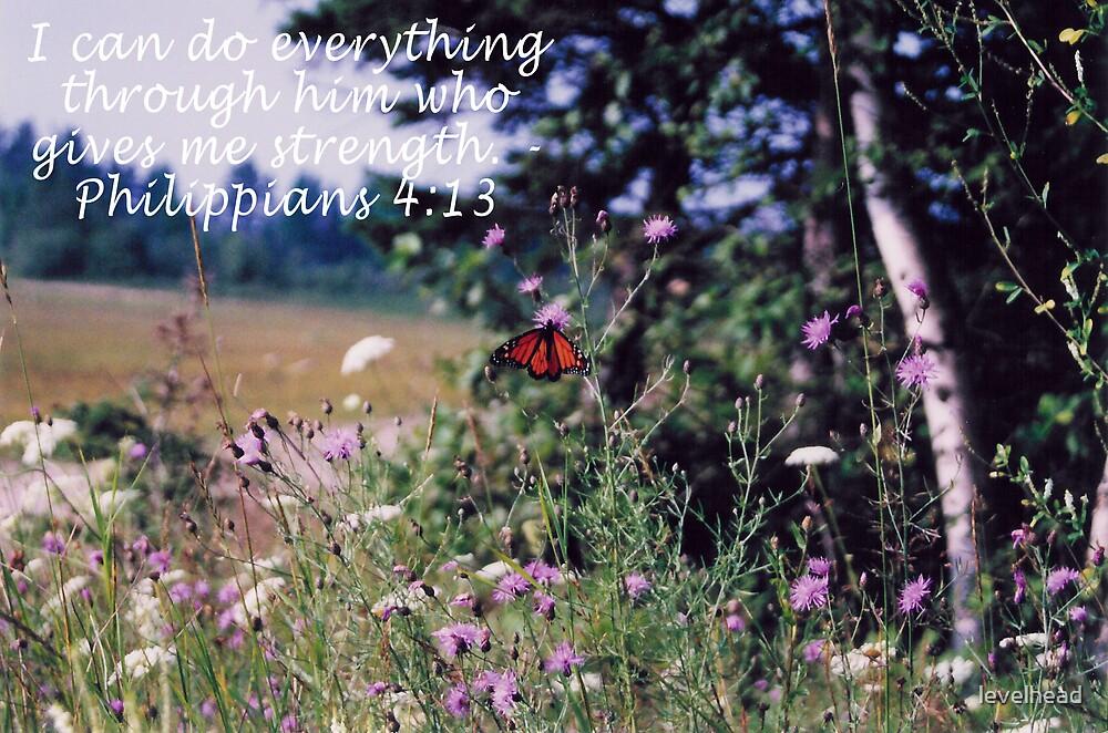 Monarch butterfly by Valerie L