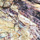 Rich Garnet Marble by Stephanie Perry