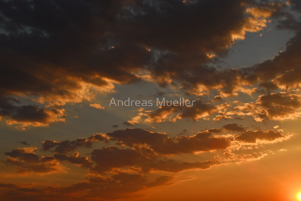 Nature's Canvas by Andreas Mueller