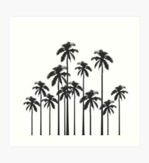Black and White Exotic Tropical Palm Trees Art Print