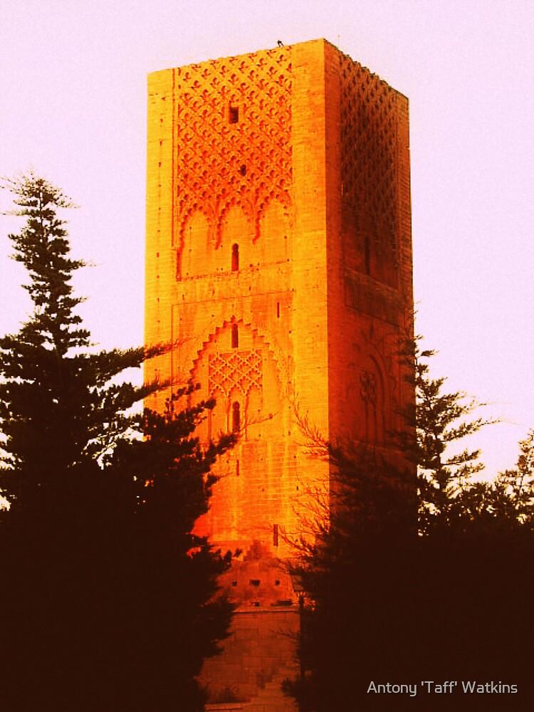 Tower by Antony 'Taff' Watkins