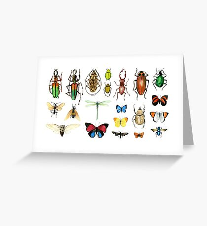 The Usual Suspects - insects on white - watercolour bugs pattern by Cecca Designs Greeting Card
