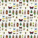 The Usual Suspects - insects on white - watercolour bugs pattern by Cecca Designs by Cecca-Designs