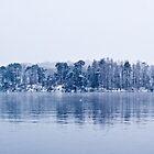 Snow fLakes by Luke Johnson