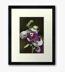 Snail Flower Framed Print