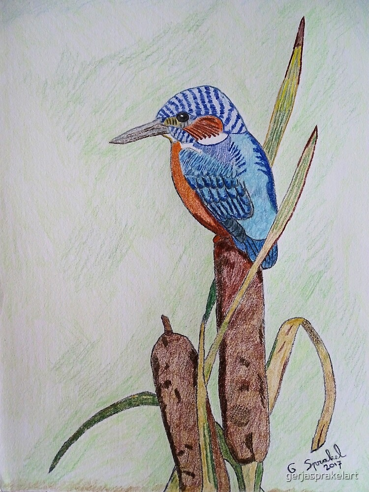 Kingfisher by gerjasprakelart
