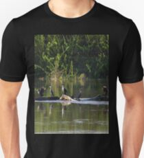 Five Cormorants  T-Shirt