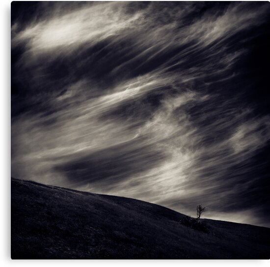 A Feeling of Emptiness (toned) by Jeff Masamori
