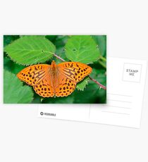 Silver-washed fritillary Postcards