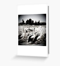 Pelican Bay Relax By The Jetty Greeting Card