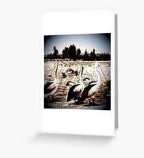 Pelican Bay Sunny Day Greeting Card