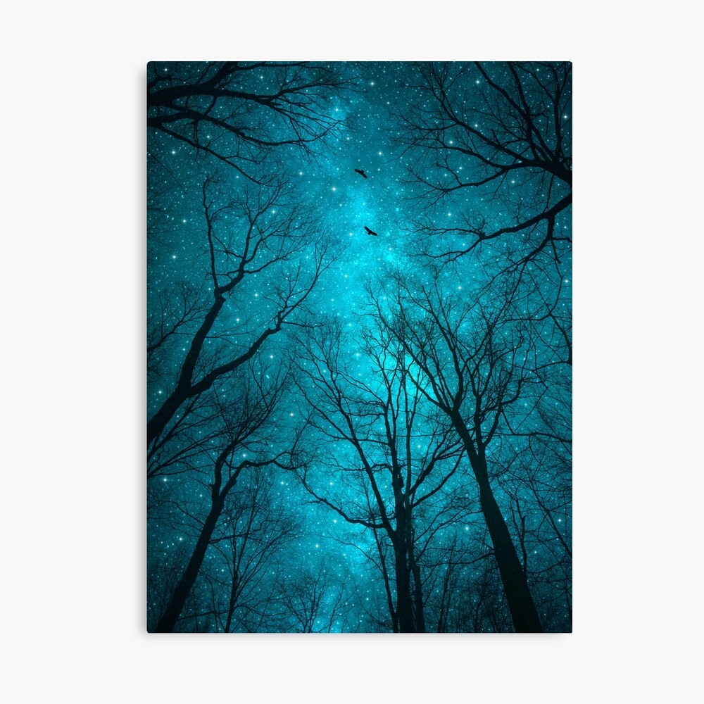Sterne können nicht ohne Dunkelheit leuchten Leinwanddruck