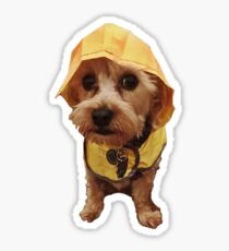 Puppy Raincoat Sticker