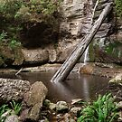 Snug Falls by fiona-gumboots
