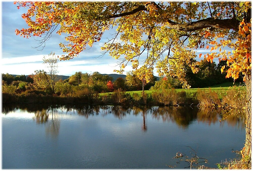 Autumn Pond by Jim Sugrue