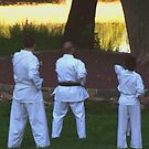 Karate in the Park by Judi Taylor