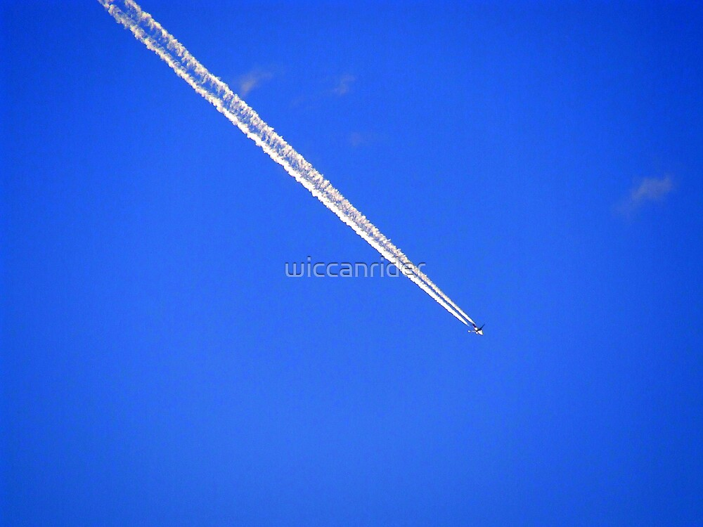 In To The Wild Blue Yonder by wiccanrider