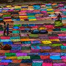 Laundry Day in India by Glen Allison