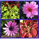 Summer Flowers and Plants Collage von BlueMoonRose