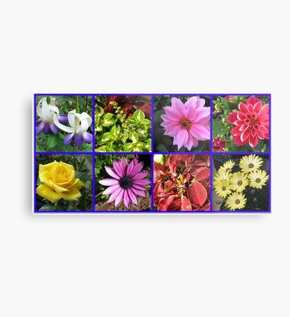 Summer Flowers and Plants Collage Metallbild