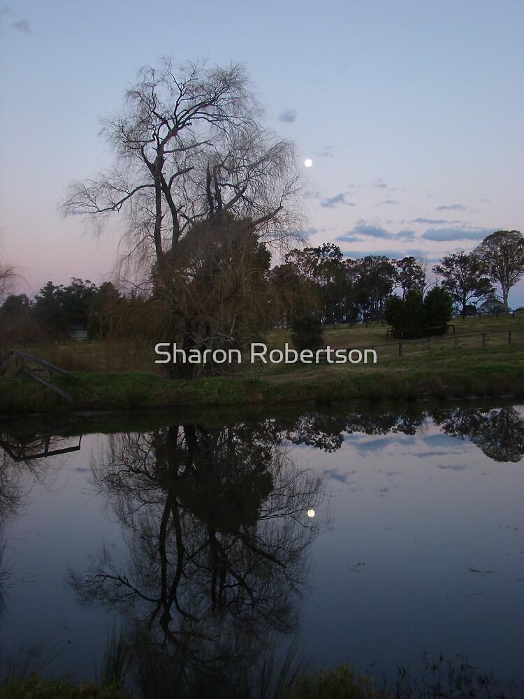 Moon Dam by Sharon Robertson