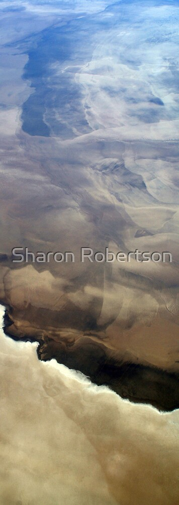 Desert View from the Sky by Sharon Robertson