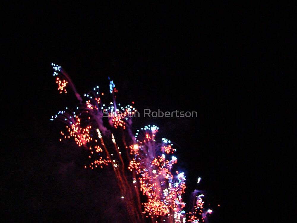 Fireworks by Sharon Robertson