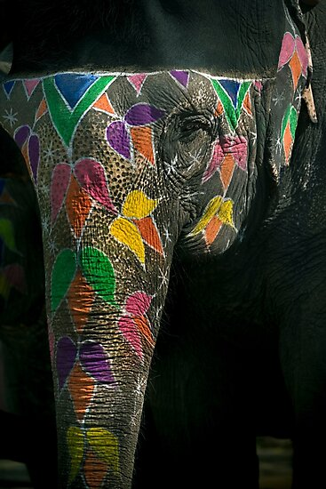 Elephantasy - Travel fine art Photographic Print by Glen Allison